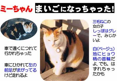 image081121.jpg