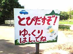 image_okinawa_2.jpg